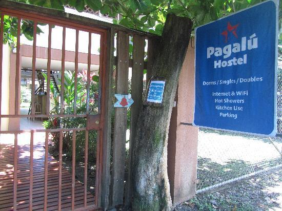 Pagalu Hostel 사진