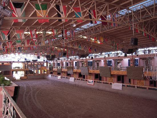 Horseshoe Point Resort & Country Club: Hotel Horse Arena