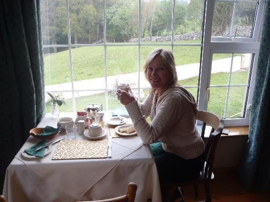 Muckross Riding Stables B&B: Delicious, satisfying breakfast with a view