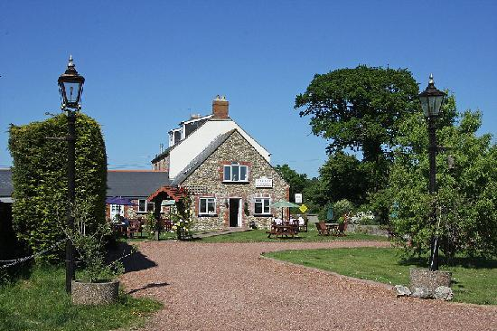 Spillers Farm Tea Rooms: A view of the gardens