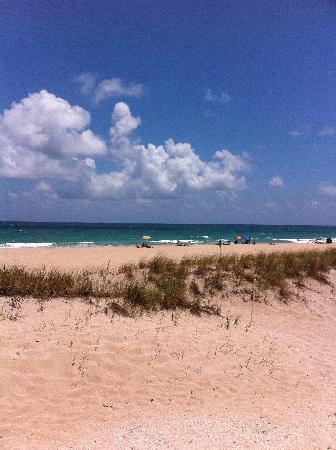 Tropic Seas Resort: great view