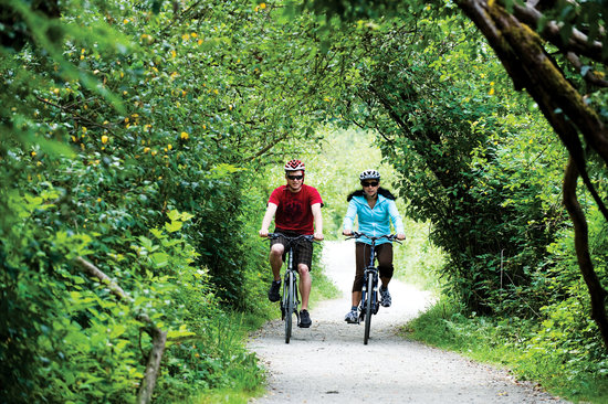 Cycle BC Rentals and Tours: Discover Vancouver on a bicycle