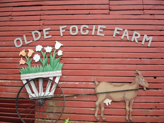 Olde Fogie Farm: Barn Sign