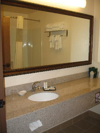 Expressway Suites of Fargo: view of bathroom