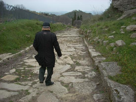 La Dea di Morgantina : Here a main road leading down to the Agora; we were told that this is the original pavement.