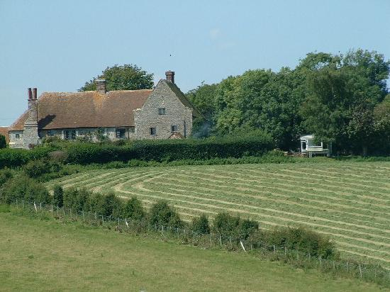 Wickham Manor Farm: The Farmhouse from nearby pasture