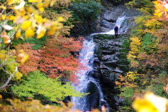 Nihonmatsu, Japan: 紅葉