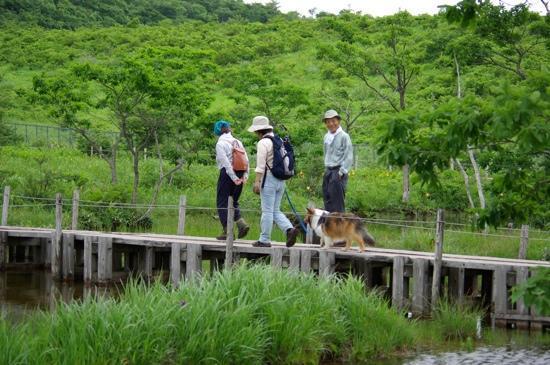 Numappara Glassland: 沼っ原湿原