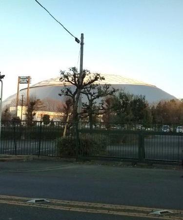Seibu Prince Dome : ドーム外観