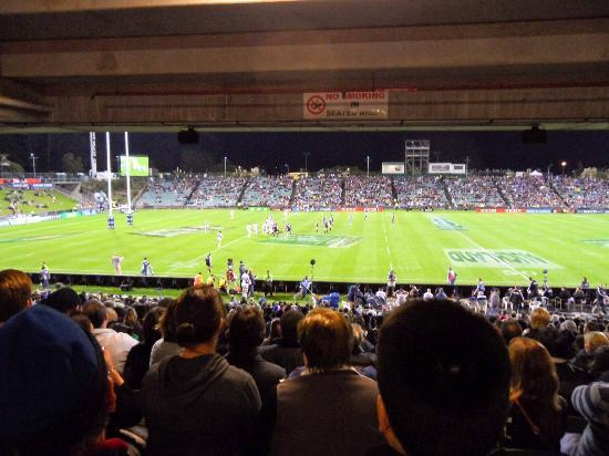 view from the concourse picture of qbe stadium albany tripadvisor