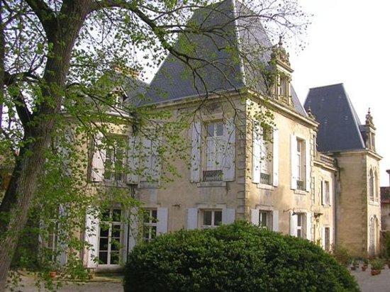 Château de Saint Michel de Lanès: Château vu du parc