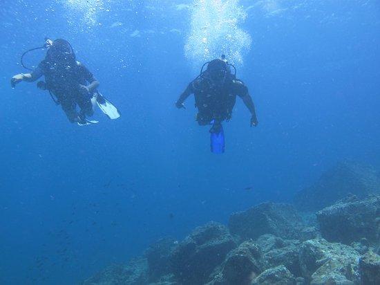 Scuba Diving Phuket PP : off v go