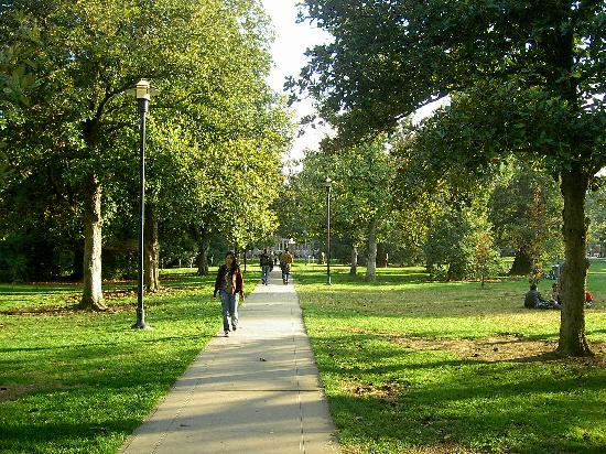 Una veduta del campus della University of California, Davis