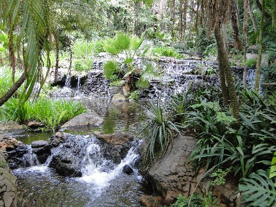 Sun City, South Africa: Waterfall and Garden area in a hotel's grounds