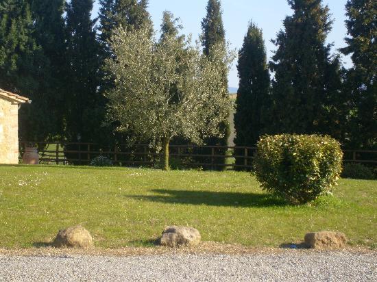 Agriturismo Bonello: giardino agriturimo