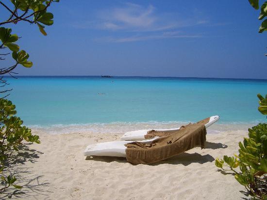 Palm Beach Resort & Spa Maldives: PB3