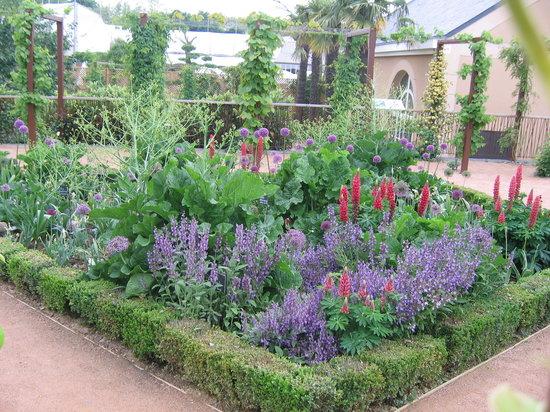 Les coussins de belle m re picture of terra botanica angers tripadvisor - Petit jardin image angers ...