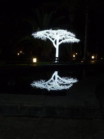 Lopesan Costa Meloneras Resort, Spa & Casino: light trees