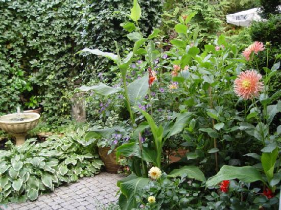 European Guesthouse: mein garten in berlin