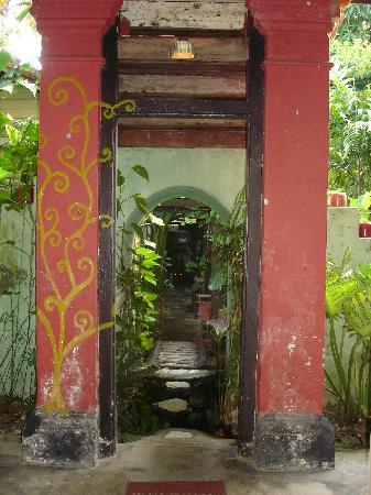 Emily Travellers' Home: The garden inside the guesthouse
