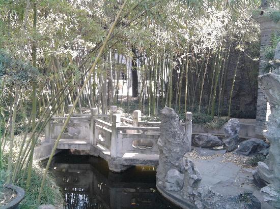Peaceful garden at Yangzhou Cuiyuan City Hotel.