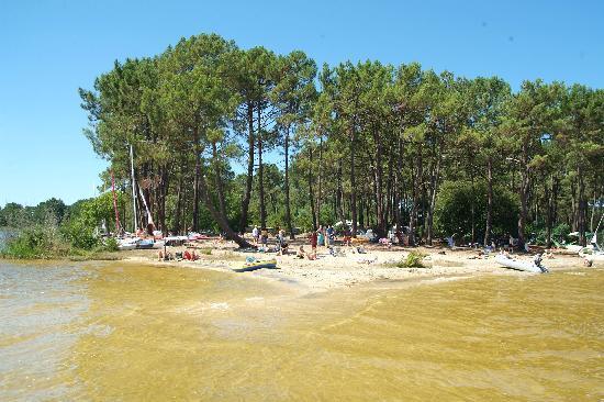 Lacanau, Francia: camping le Tedey