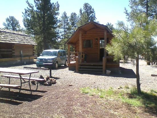 Williams / Circle Pines KOA Campground : 1 bedroom cozy cabin