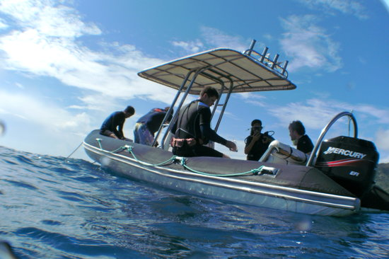 Aroa Beach, Cook Islands: Dive Boat