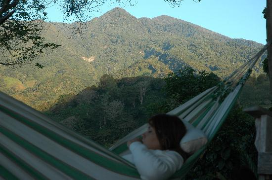 The Guest Suites at Manana Madera Coffee Estate: Volcan Baru