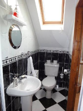 Castle Lodge Bed & Breakfast: Our cute bathroom! (Shower is located just behind where the picture is taken)