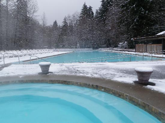 Sol Duc Hot Springs Resort: Hot Springs and Pool