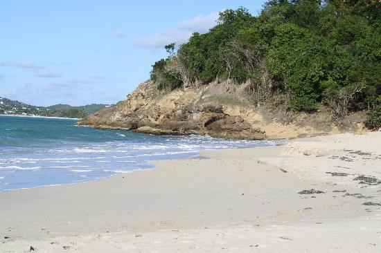 Antigua's Yepton Estate Cottages: Beach to ourselves..