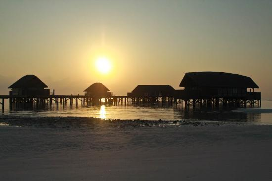 COMO Cocoa Island, The Maldives: Sunrise