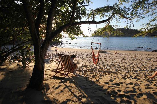 Aqua Wellness Resort: hammocks on the beach.
