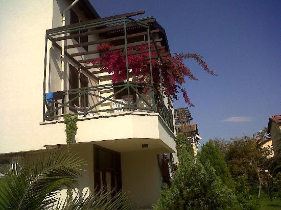 Belkon Club Hotel: complex