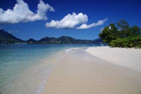 Fairy-Tern Chalet : Our Beach