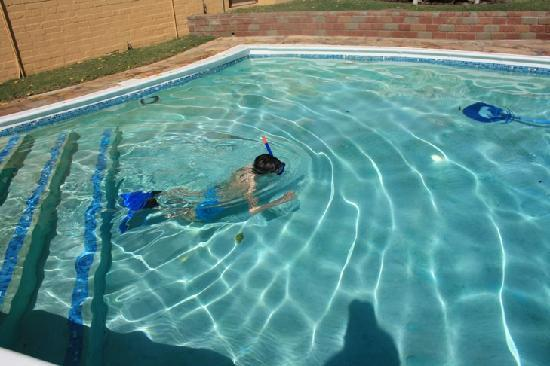 101 Oudtshoorn Holiday Accommodation: Nice large swimmingpool & clean
