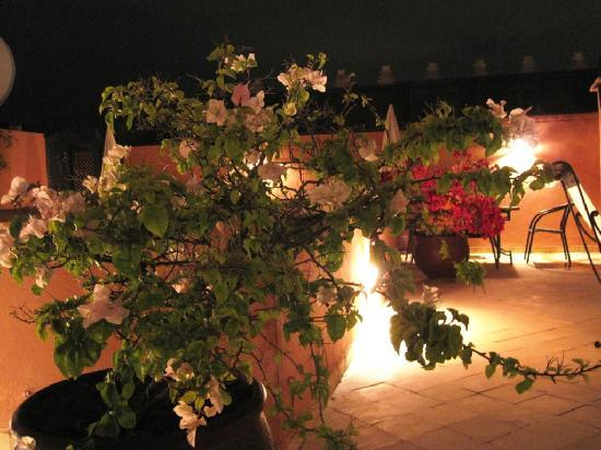 Riad Nerja: roof terrace by night