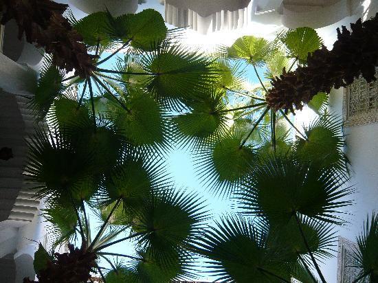 Riad Vert Marrakech: Vue du patio