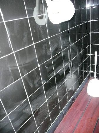 Arc Hotel: Mur toilettes, nettoyage annuel à revoir