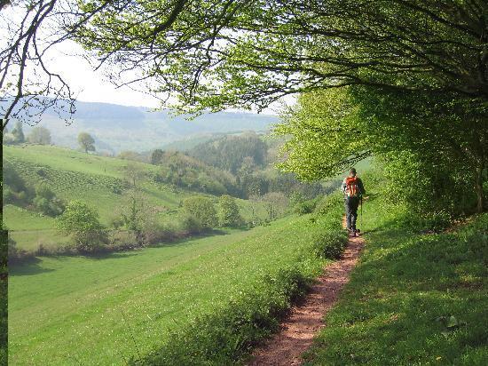 Little Brendon Hill Farm: Coleridge Way tranquility