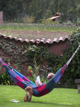 The Green House Peru: Relaxing in the hammock in the best company