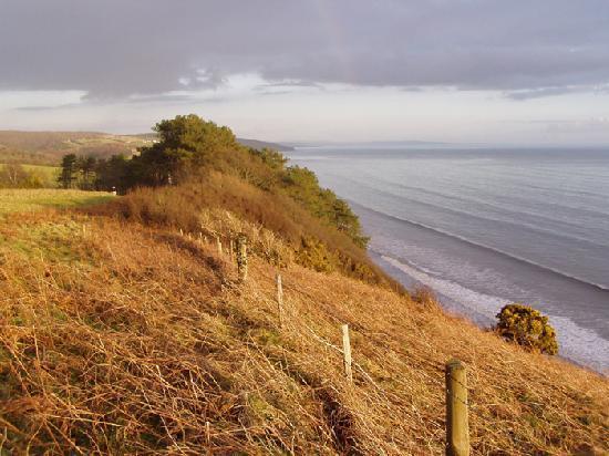 Pen Coed B&B: Local coastal path to Amroth