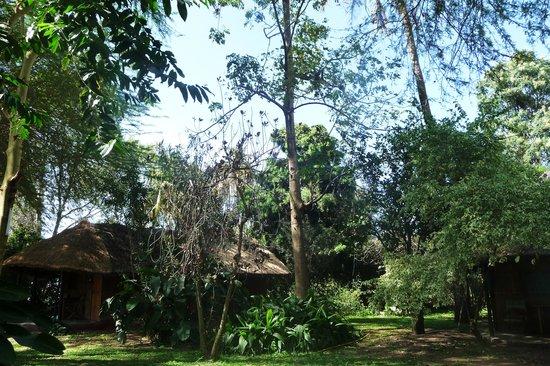 Tunza Lodge cottage ;) sweet