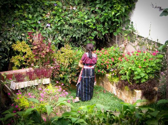 San Marcos La Laguna, Guatemala: One of the many garden areas...