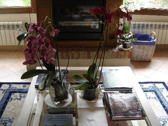 Hotel rural Arpa de Hierba: Flores Frescas