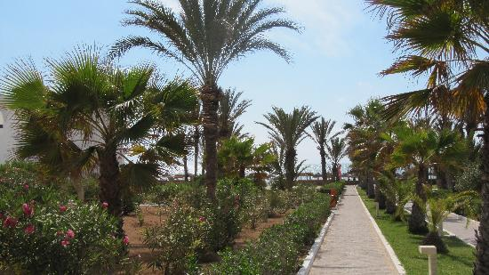 Seabel Aladin Djerba: chemin vers la plage