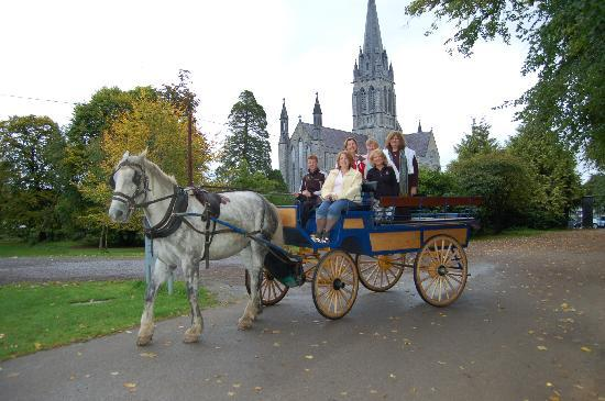 Killarney Jaunting Cars Tangney Tours