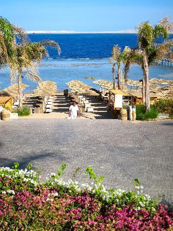 Cleopatra Luxury Resort : Heading down to the beach