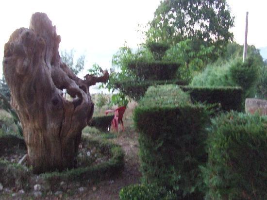 Sarria, İspanya: jardin terraza de a casa de carmen